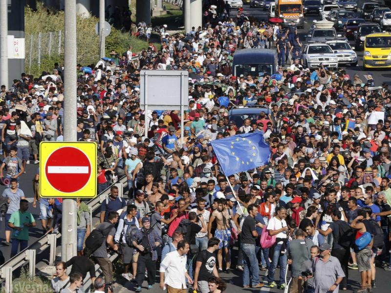 EU-Umsiedlungsprogramm sofort stoppen – Schluss mit der Masseneinwanderung!